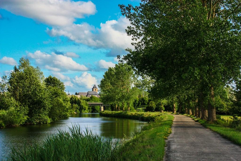 pista ciclcabile che costeggia il fiume con albero e una chiesa sullo sfondo