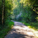 Fare cicloturismo in Belgio: il RAVEL