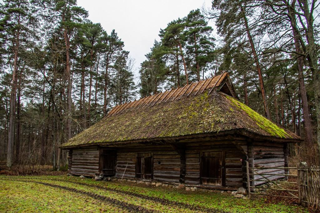 capanna d'epoca in legno e tetto di paglia
