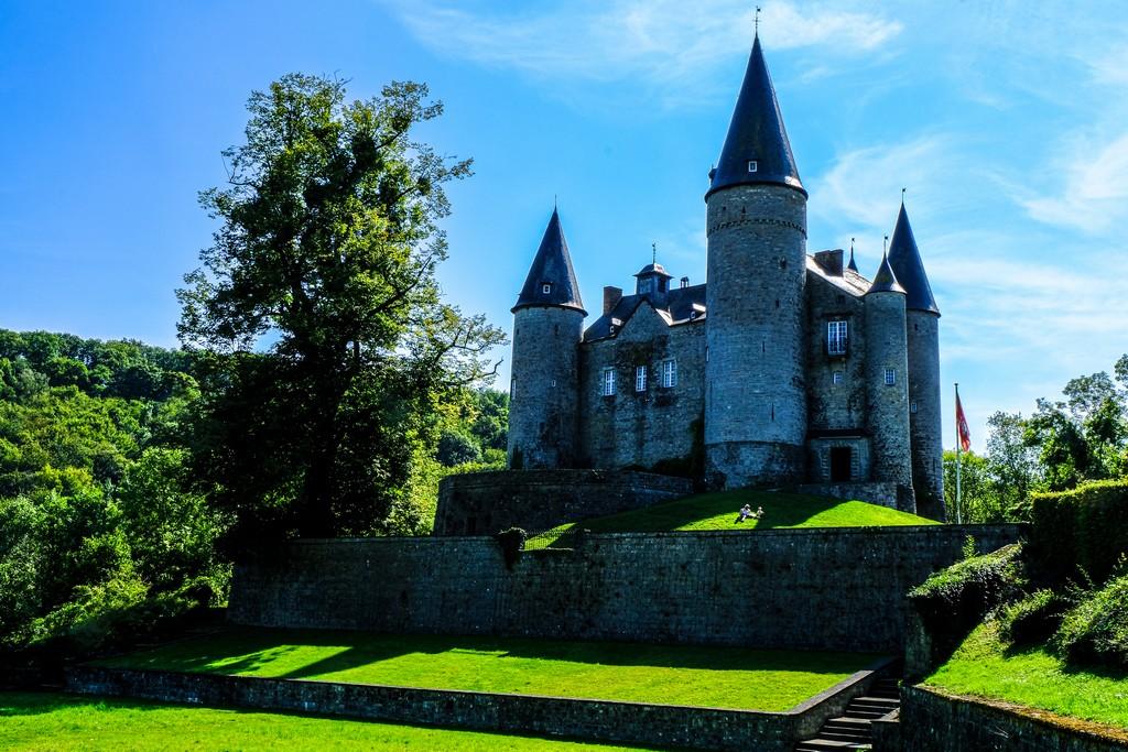 castello con primo piano di prato verde e albero