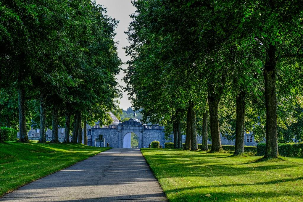 viale d'ingresso con file di alberi e muretto