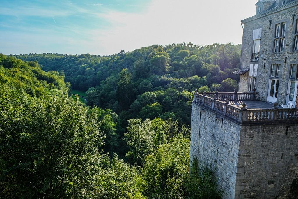 vista del bosco dietro al castello