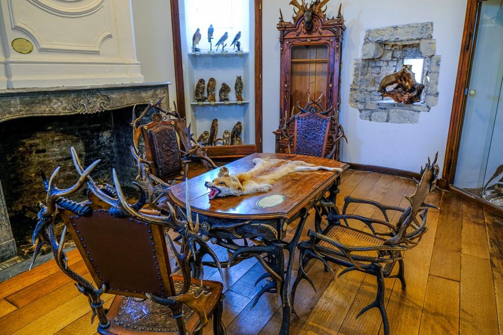 sala con animale sul tavolo e sedie con corna di cervo