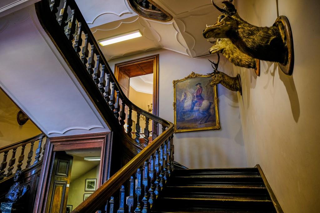 La scalinata dell'ingresso con teste di animali impagliati