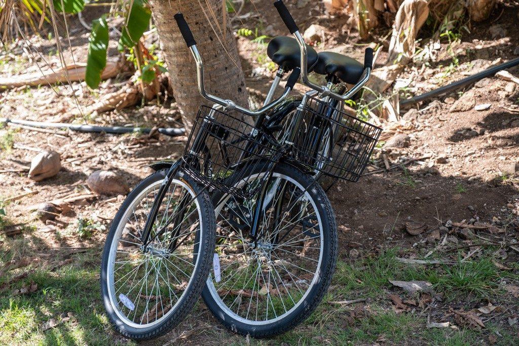 due bici nere