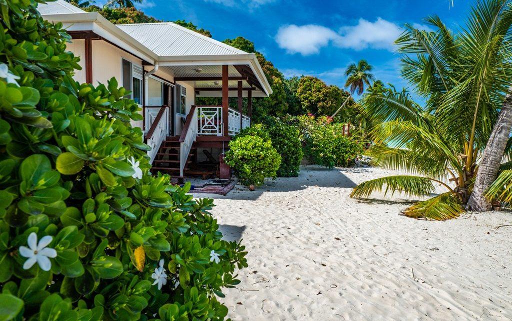 fiori di tiare in primo piano su spiaggia con bungalow e palme