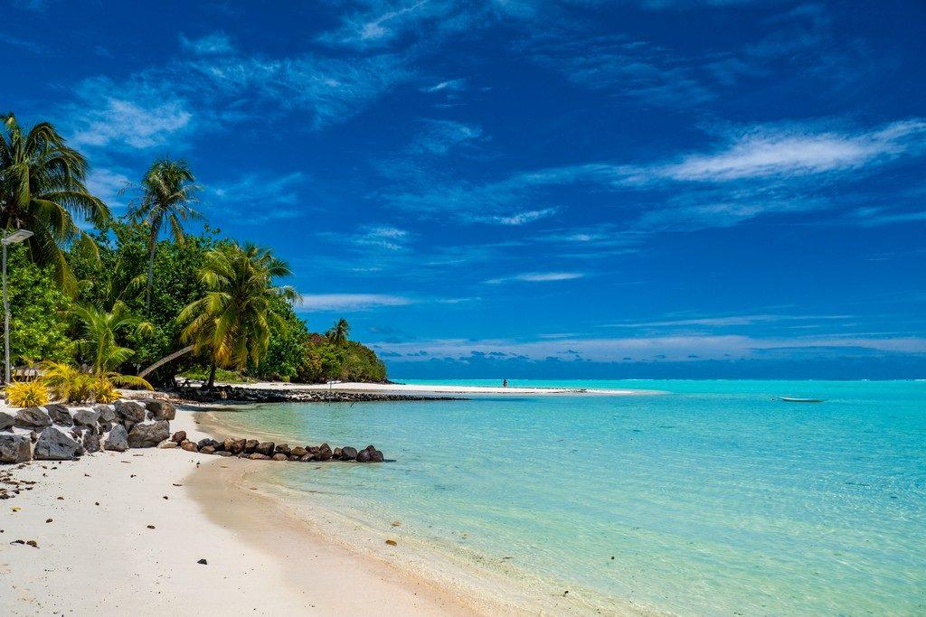 spiaggia bianca e mare con palme