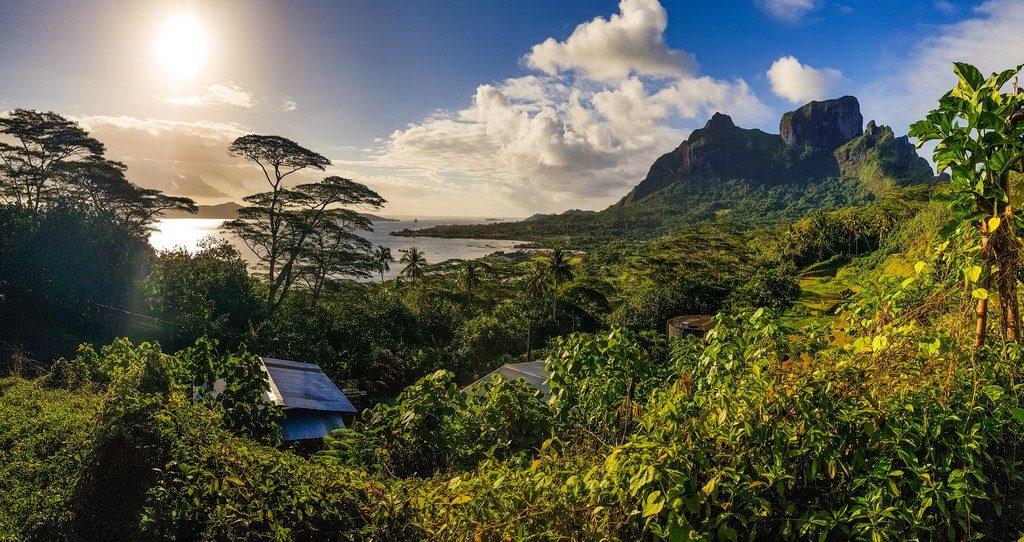 vista della costa da un punto panoramico sopraelevato con alberi e cime