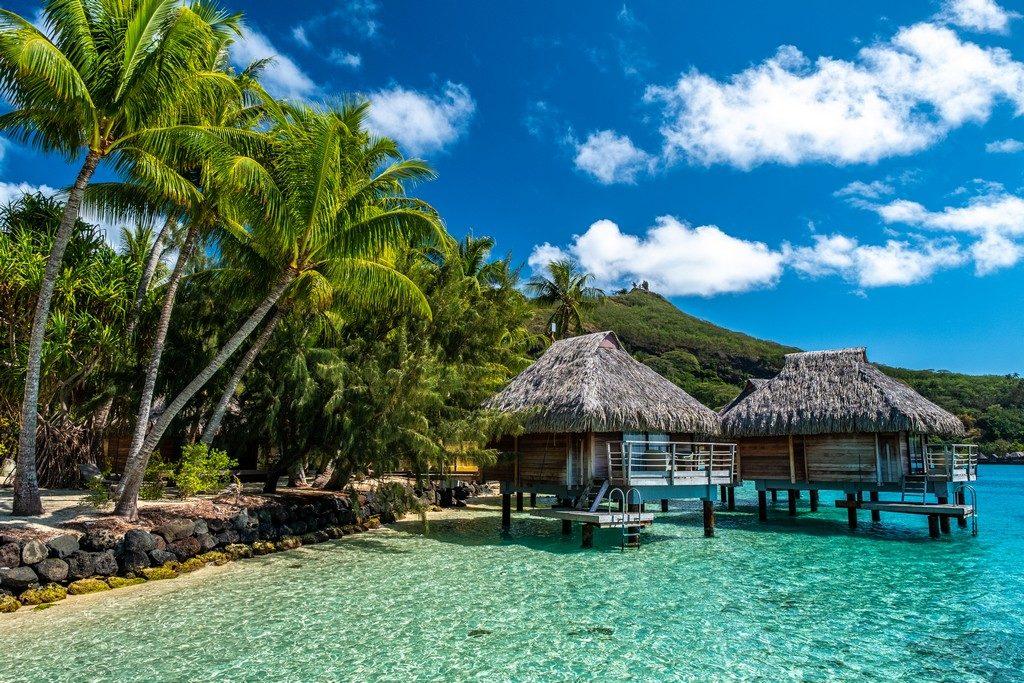 overwater sulla laguna con palme