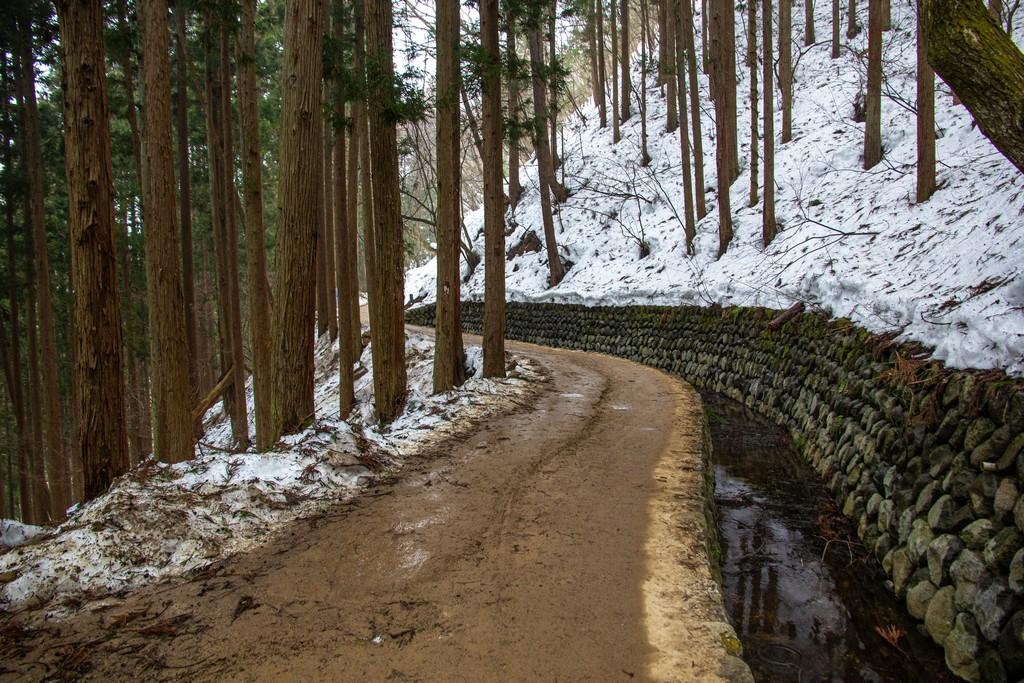 sentiero sterrato di montagna con neve e bosco