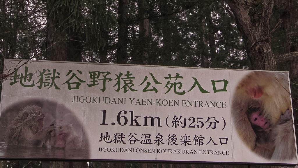 insegna di un parco in mezzo al bosco