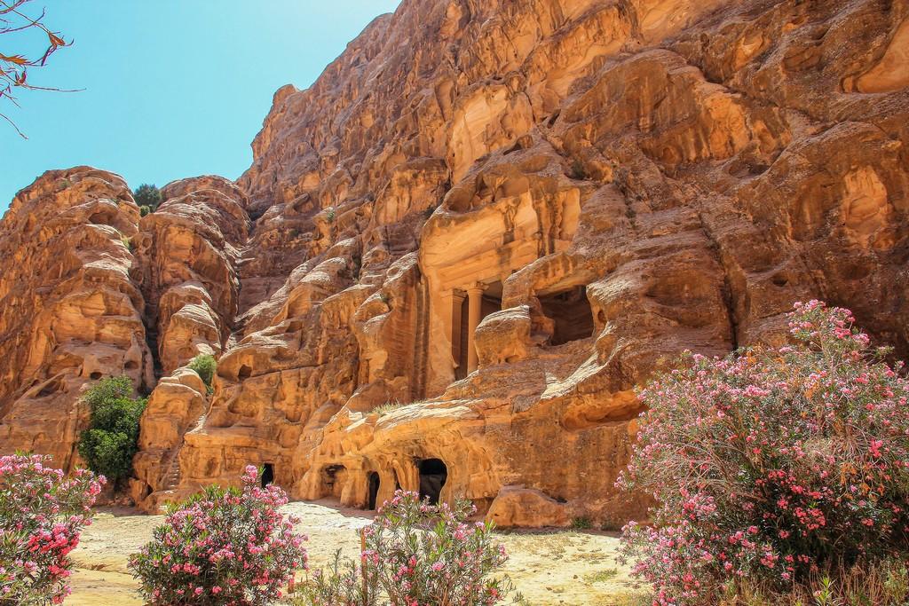 fiori in primo piano e sul fondo una scultura nella roccia