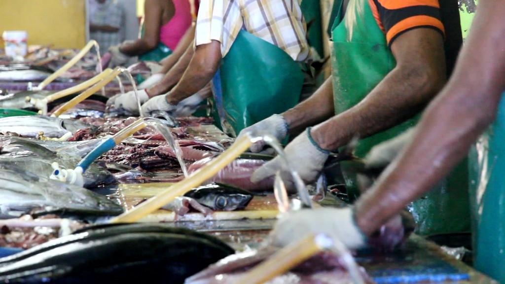 pulizia del pesce al mercato del pesce di male