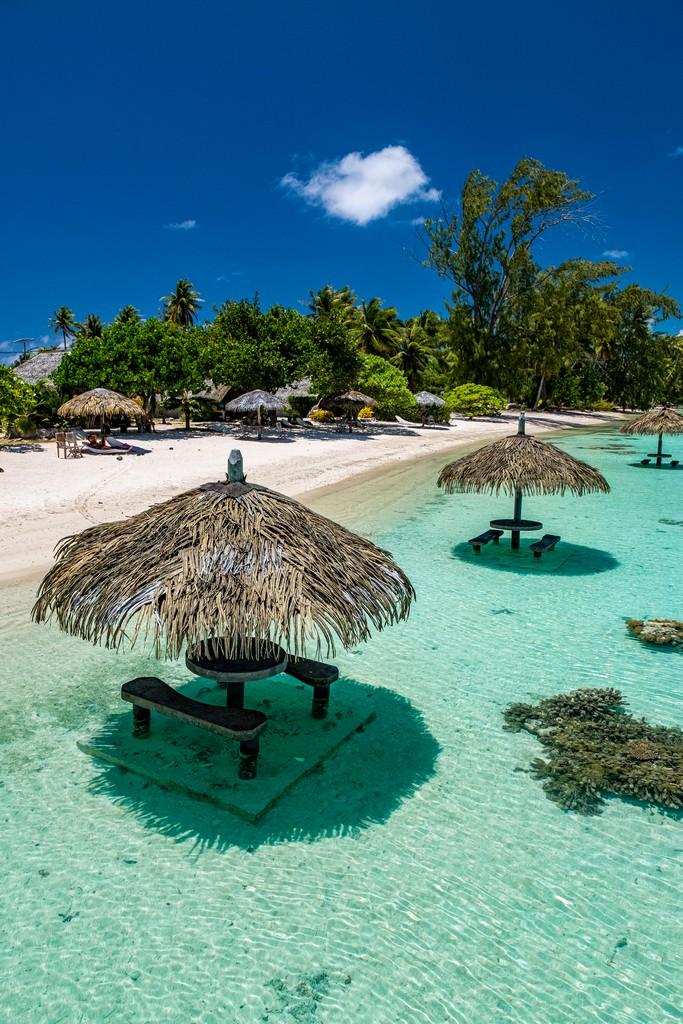 vista degli ombrelloni e della spiaggia con gli alberi