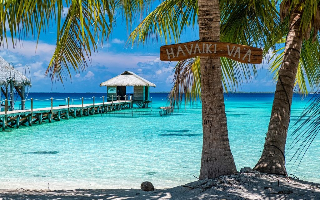 10 cose da non perdere a Fakarava palme in spiaggia