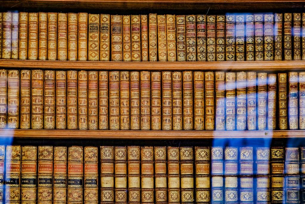 vista delle rilegatura antiche dei libri posati sugli scaffali dietro una vetrata