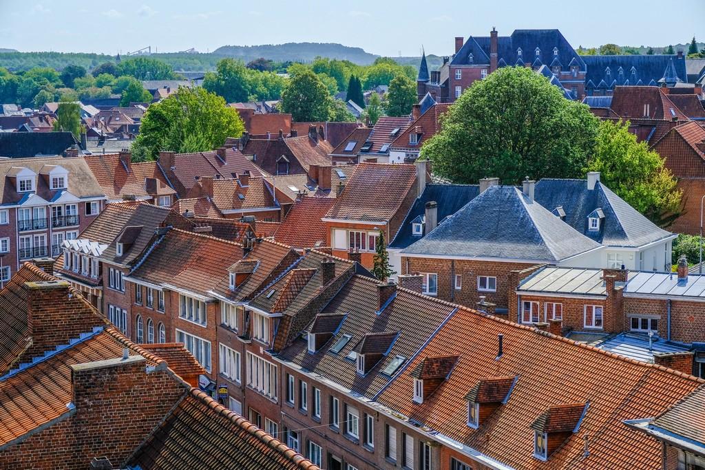 vista sui tetti spioventi rossi e grigi e in lontananza con alberi