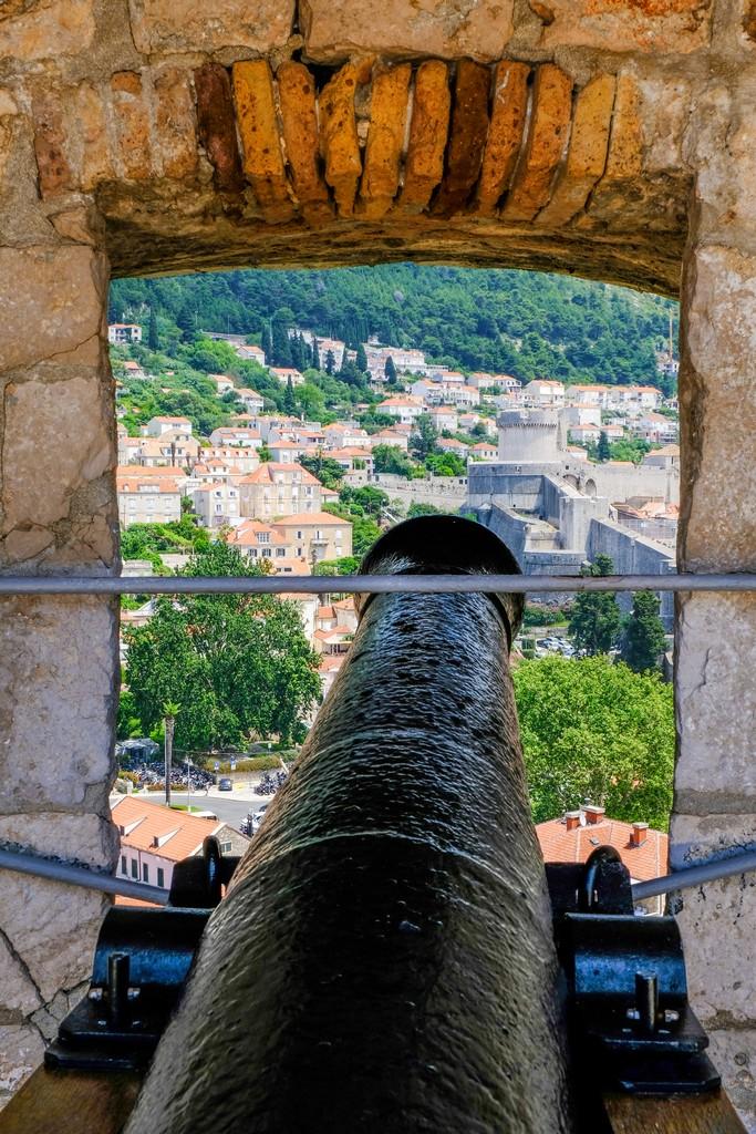 cannone con vista città