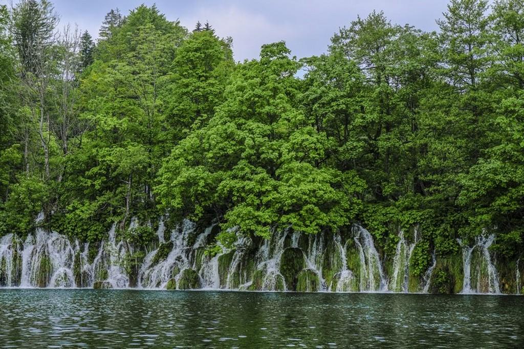 Guida laghi di Plitvice: cascatelle e lago