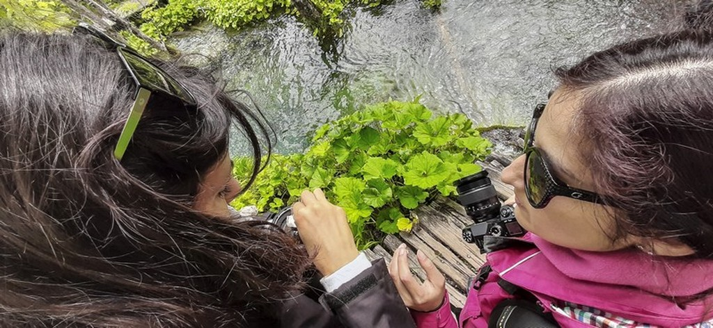 Guida laghi di Plitvice: ragazze con macchine fotografiche