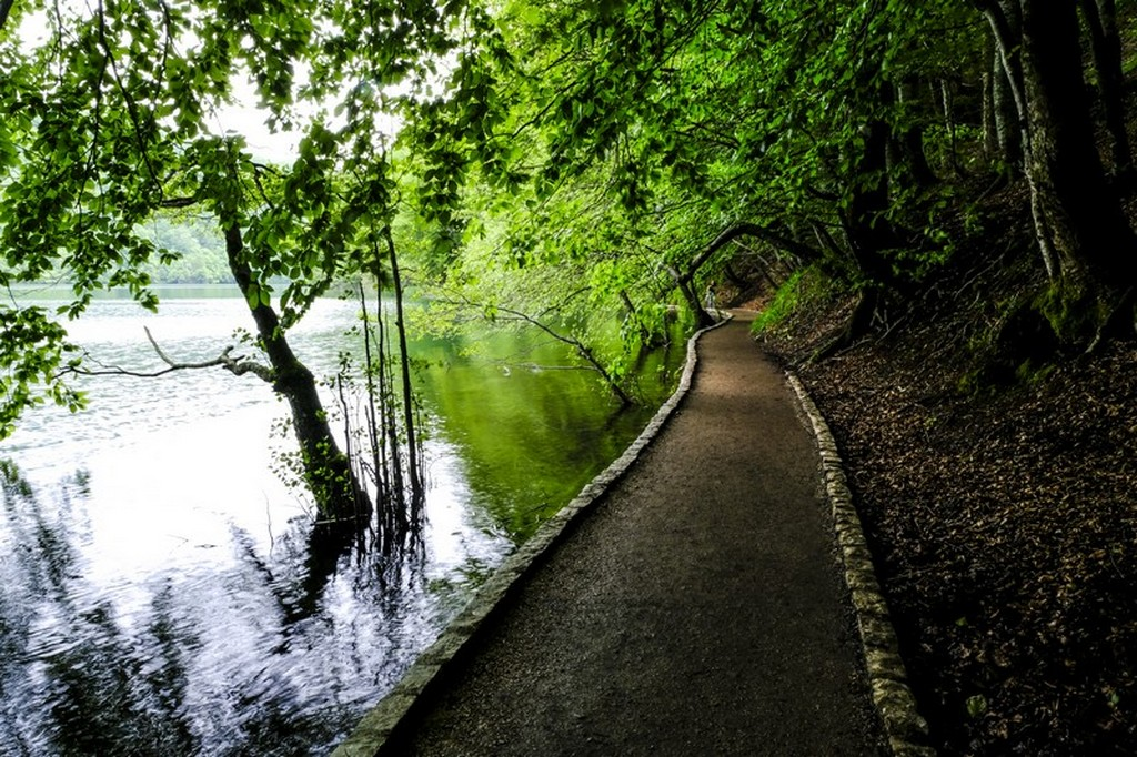 Guida laghi di Plitvice: percorso a lato del lago