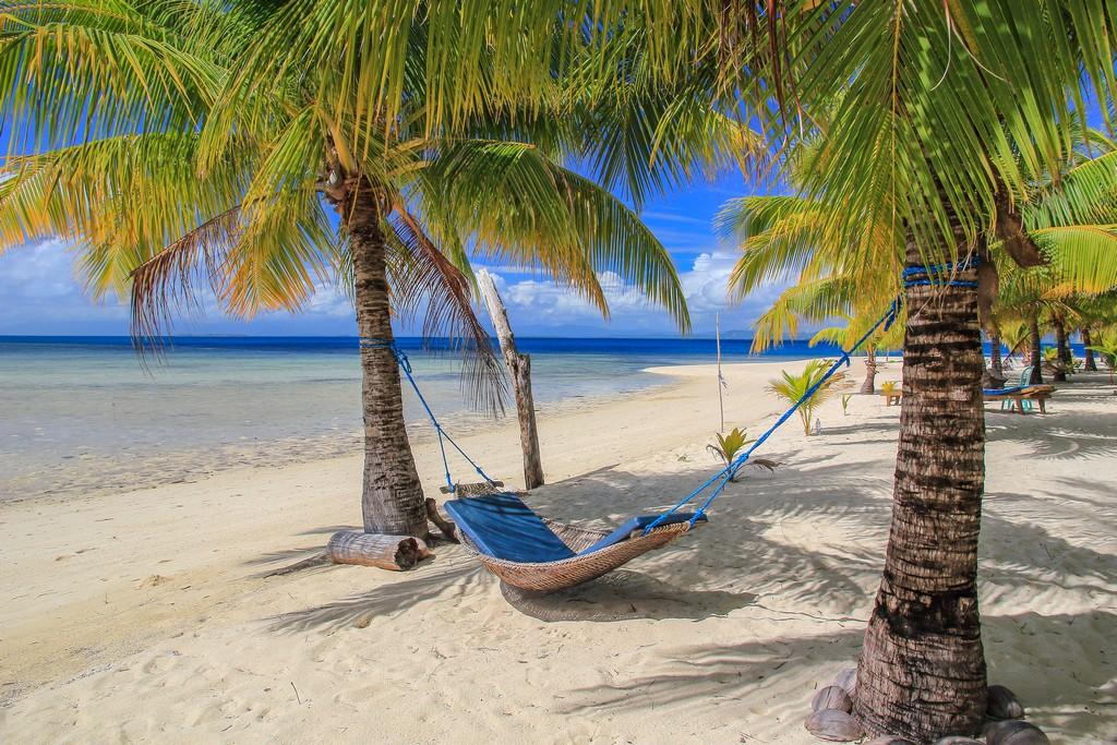 amaca con materassino fra due palme in spiaggia