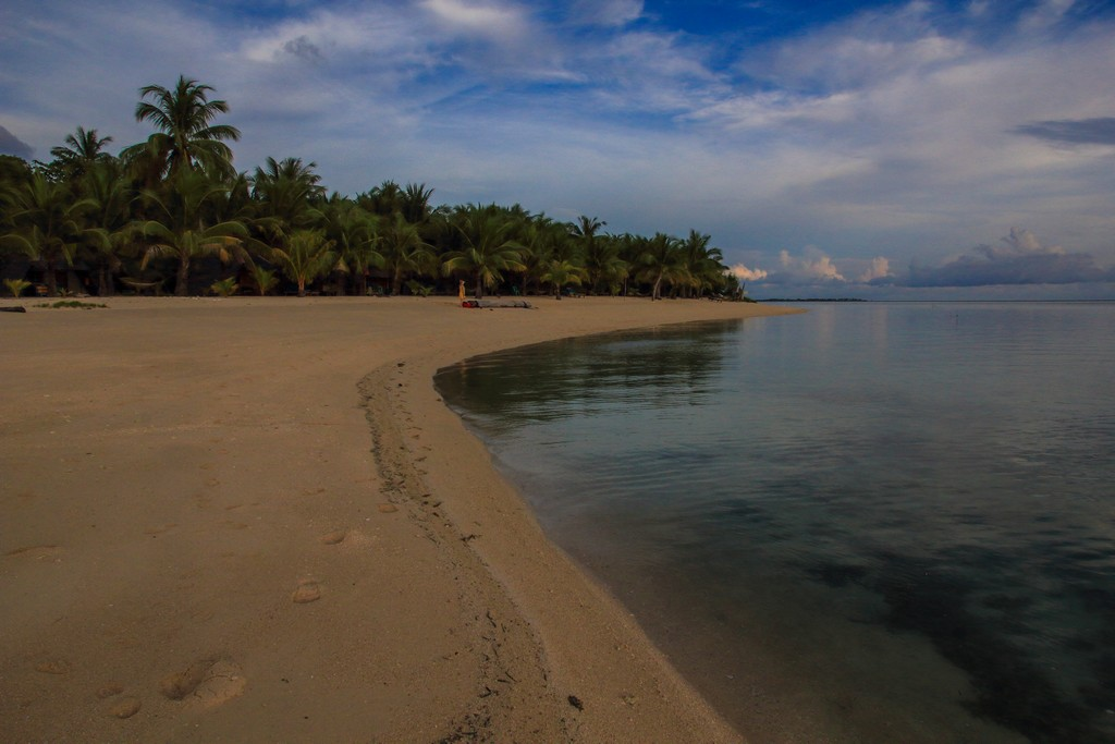 spiaggia con palme al tramonto