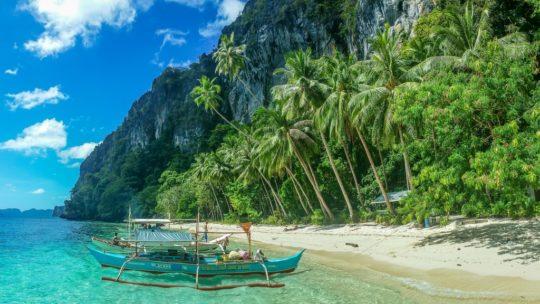 spiaggia con palme a ridotto della montagna con barche