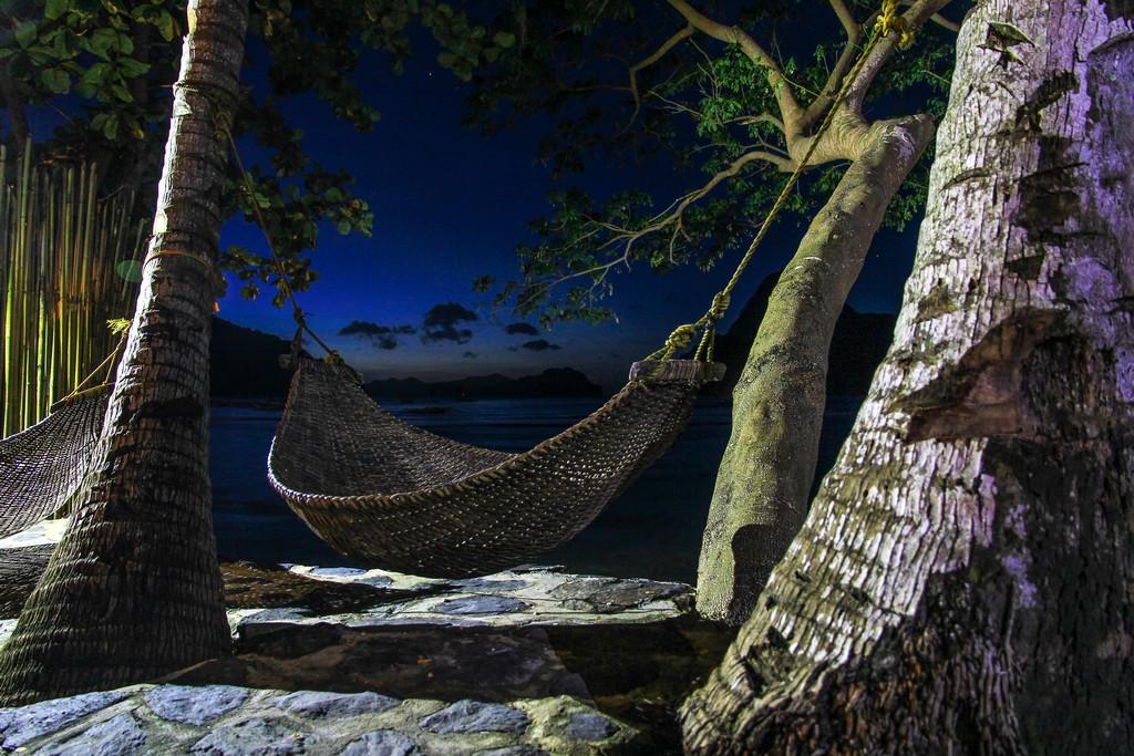 amaca fra due alberi in riva al mare alla sera