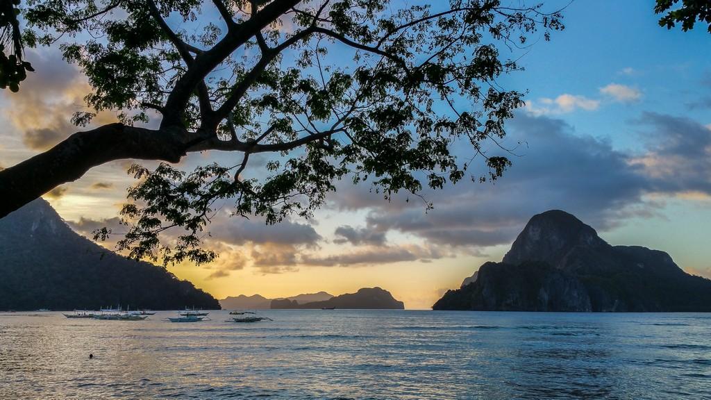 vista della baia al tramonto con albero e sfondo di isole