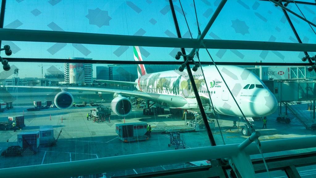 aereo di emirates con disegni parcheggiato al finger