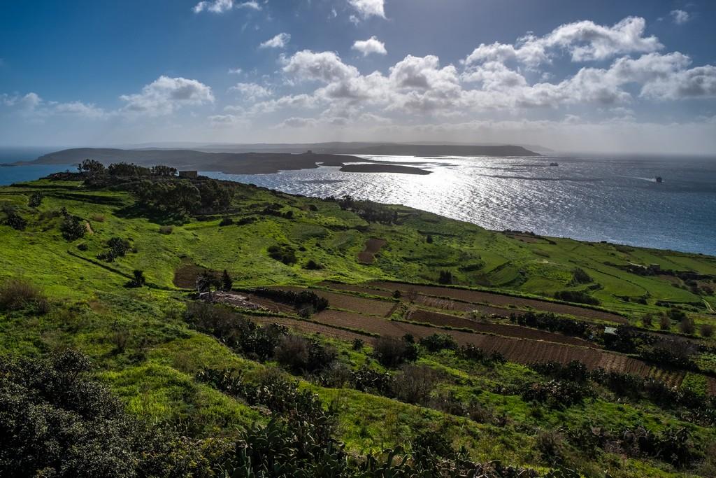 colline verdeggianti affacciate sul mare Cosa vedere a Gozo