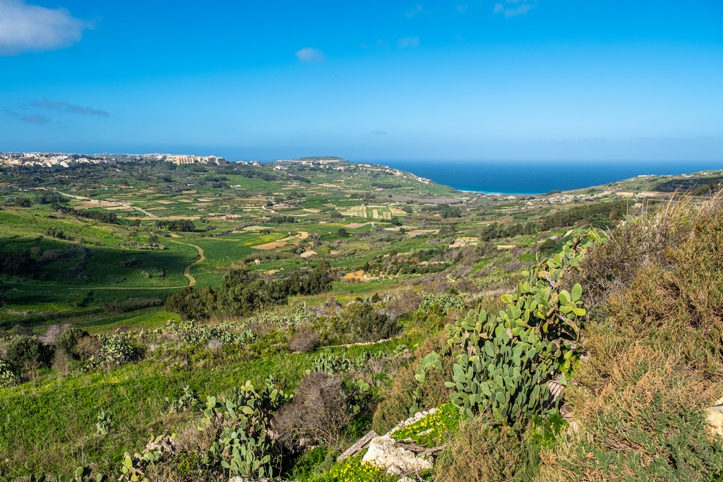 colline verdeggianti affacciate sul mare