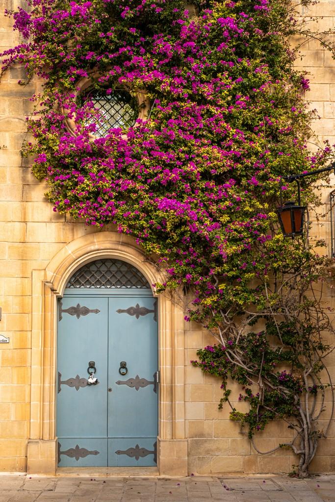 facciata con fiori