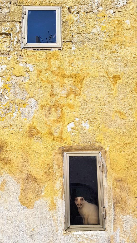 facciata a Rabat