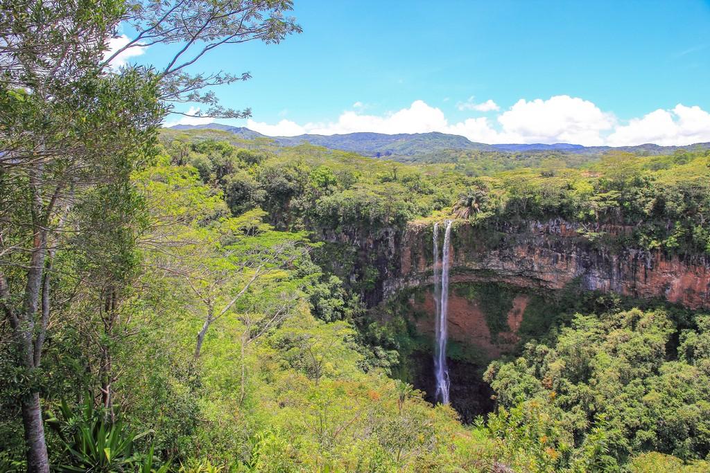 cascata in scarpata con alberi e vegetazione