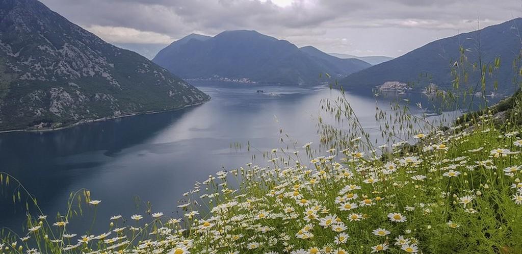 Visita alle bocche di Cattaro Il fiordo di Kotor visto dalla costa occidentale