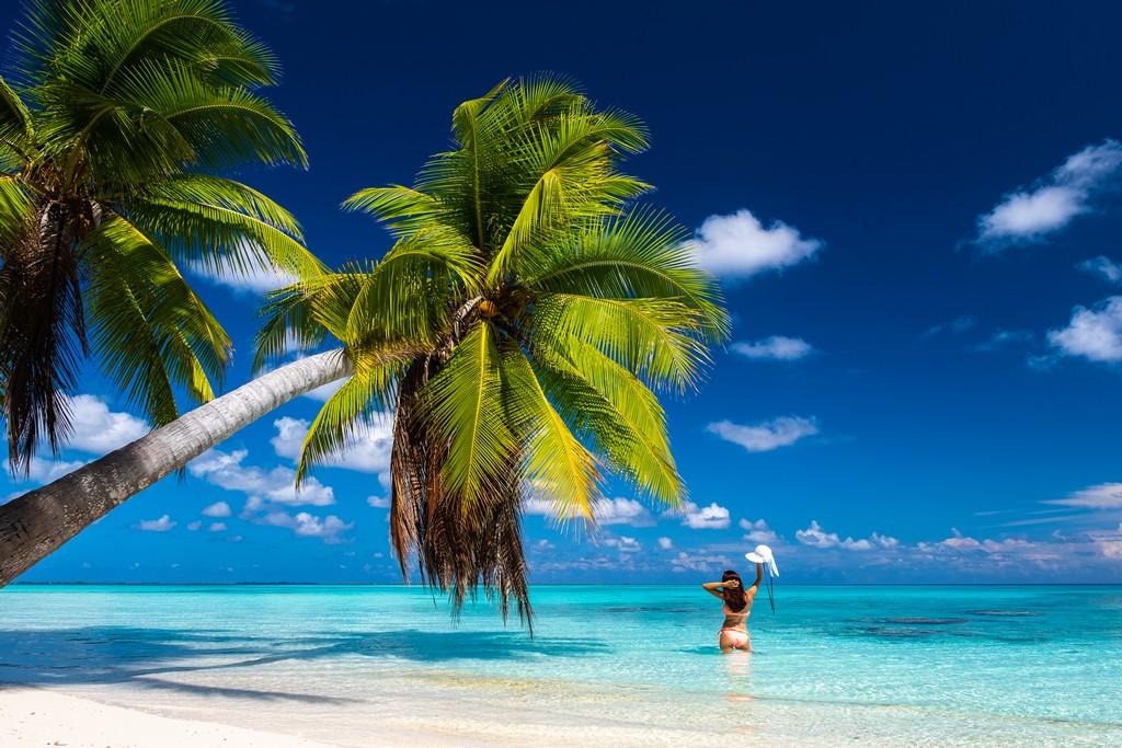 dove scattare foto da sogno a Fakarava spiaggia con palme protese sul mare e persona