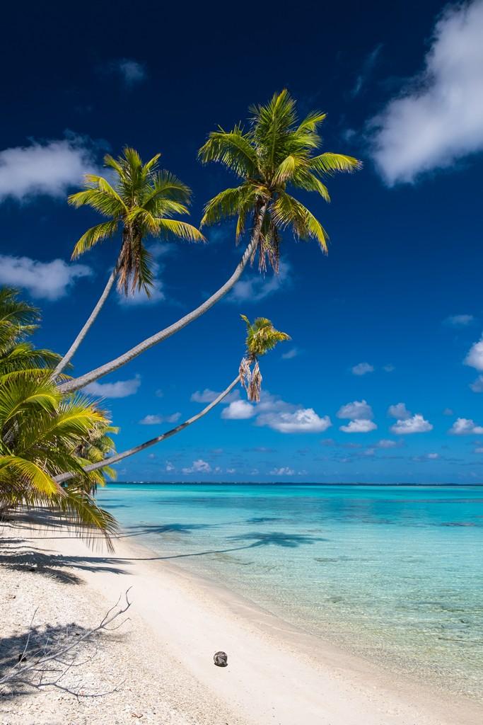 dove scattare foto da sogno a Fakarava spiaggia con palme