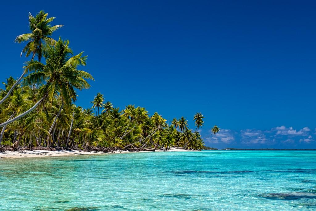 palme su spiaggia bianca e mare cristallino