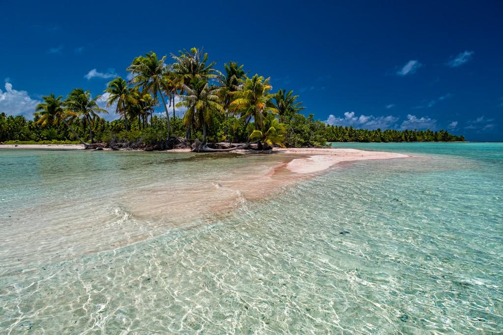 motu di sabbia rosa con palme nella laguna