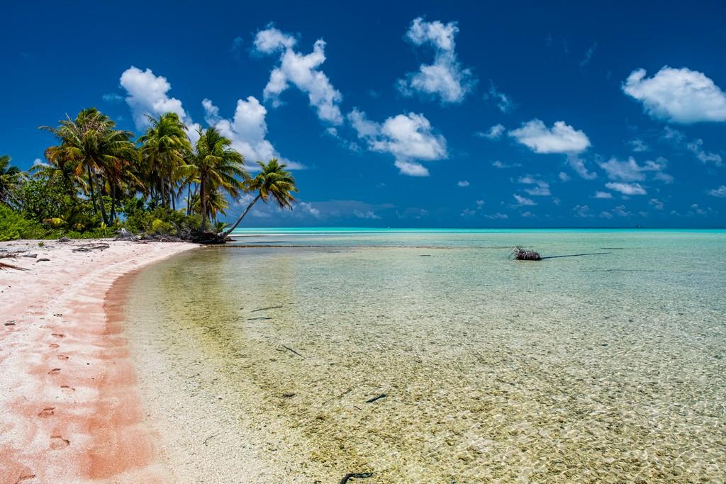 guida a Fakarava fai da te spiaggia di sabbia rosa e palme