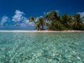 polinesia francese low cost isola con palme in laguna cristallina