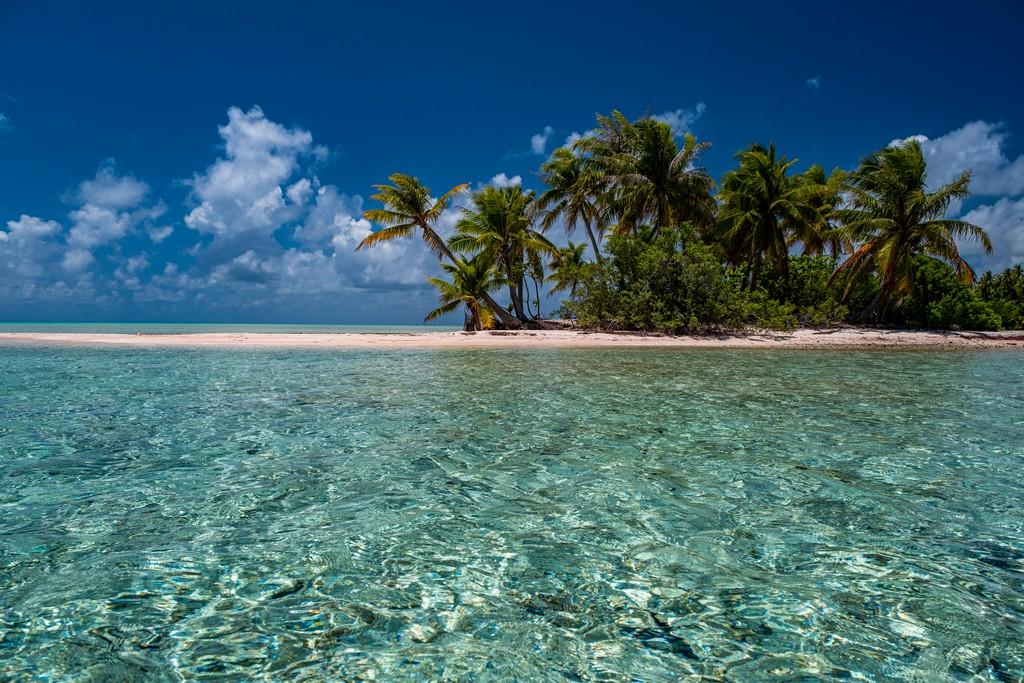 isola di sabbia rosa con palme