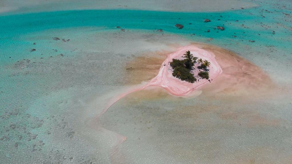 motu rosa con palme nella laguna