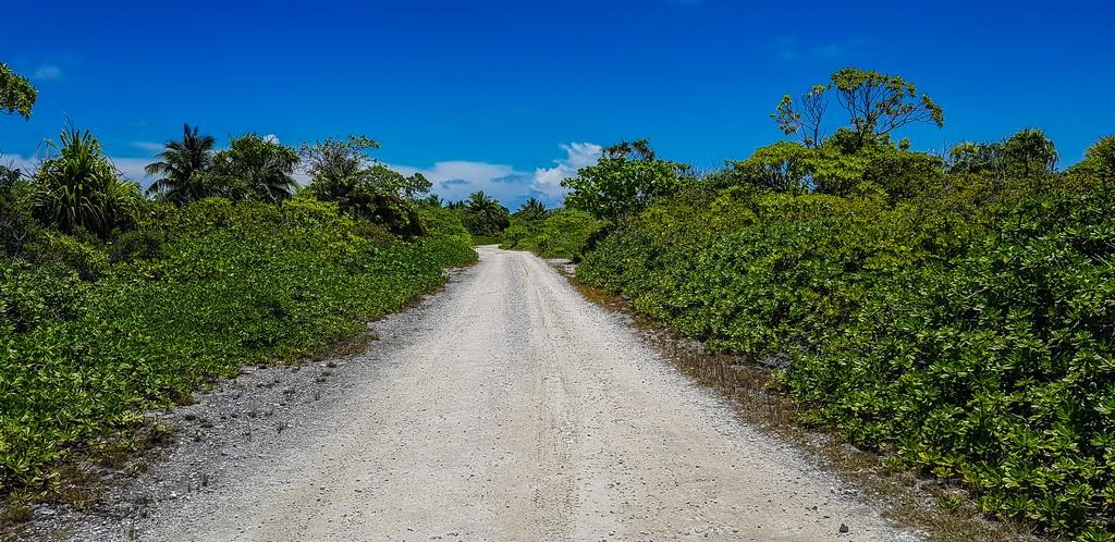 sterrato di accesso con vegetazione bassa ai lati