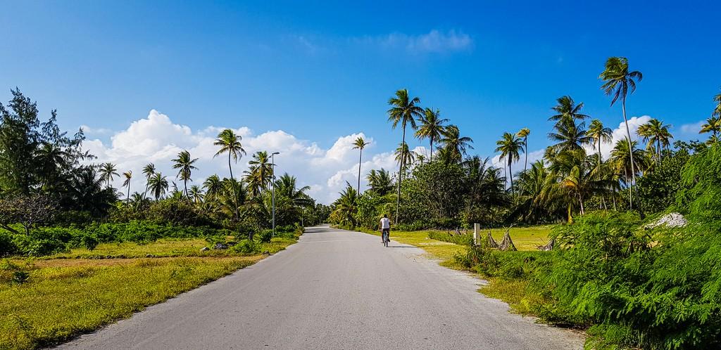 dove scattare foto da sogno a Fakarava strada asfaltata con palme e bici