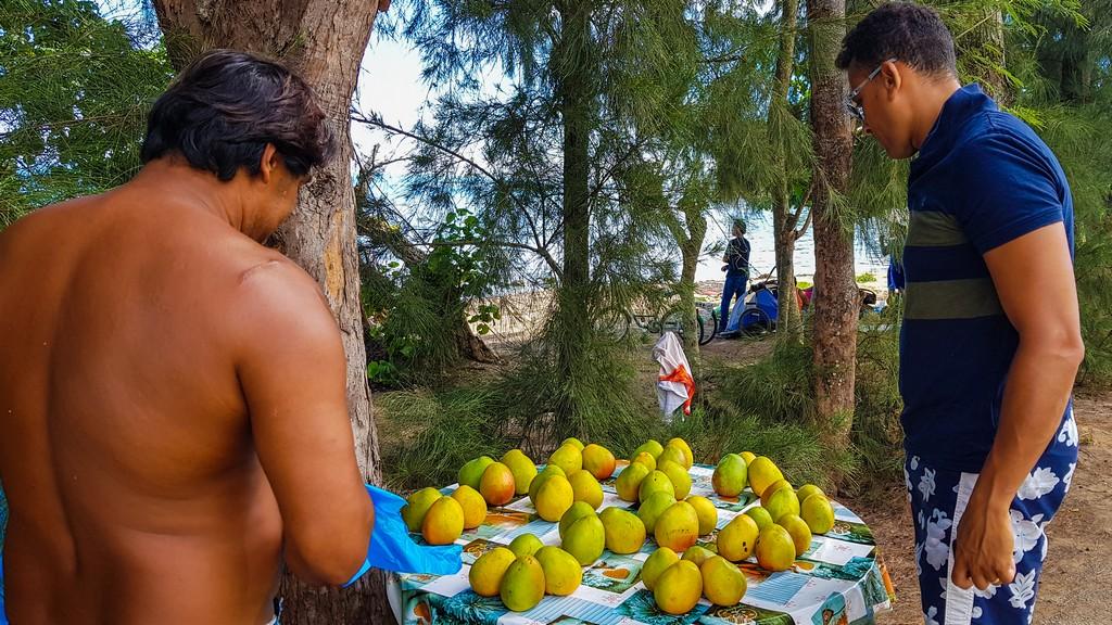 banchetto di manghi