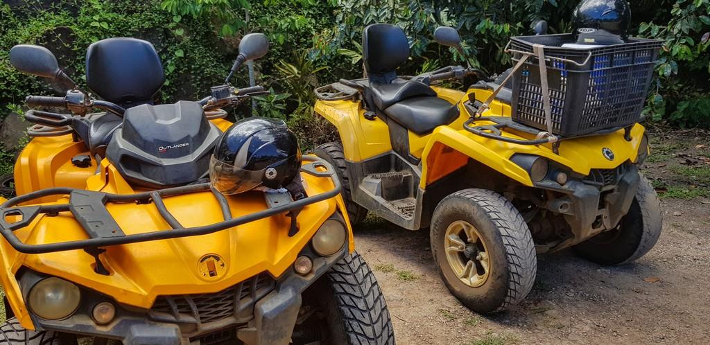quad gialli