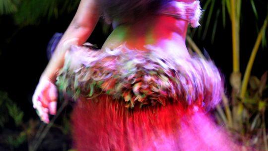 gonna di foglie di una ballerina durante la danza